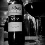 レストランのボトルワインが高い理由とは?