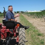 アメリカのぶどう不足は、アメリカワインにどのような影響を与えるのか?
