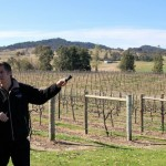 オーストラリアの大雨被害、ワインに与える影響はどれほどに?